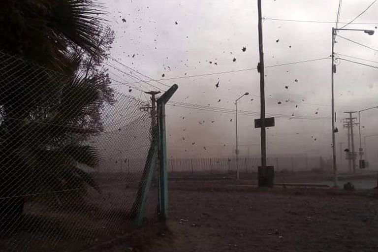 El viento Zonda afectó varias localidades de Mendoza