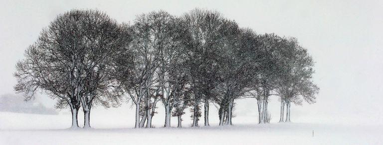 En fotos: Europa se cubrió de blanco por un temporal de nieve