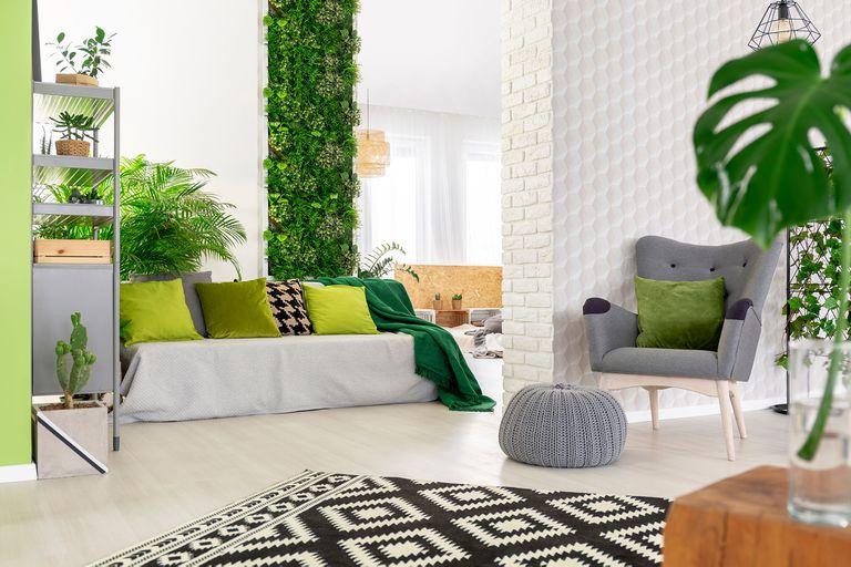 Diseño: traer la naturaleza al hogar influye en tu salud y tus comportamientos