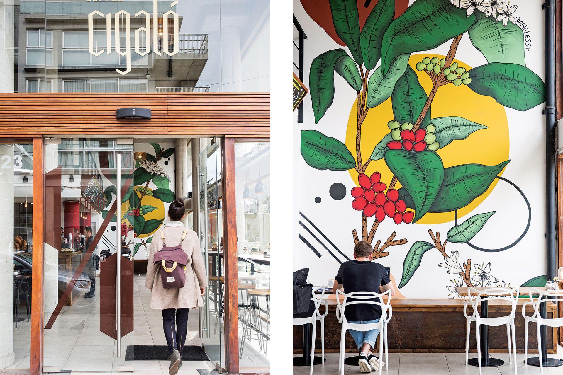 En el local de Holmberg 2004, el mural de la planta de café gigante es de la artista Dana Alessi.