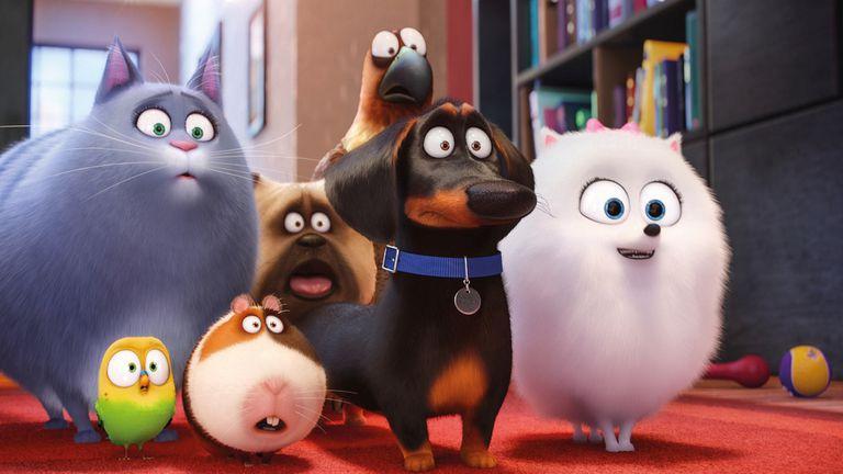 Una de las divertidas escenas de la película con el elenco de los amigos de Max y Duke en pleno, un grupo muy particular