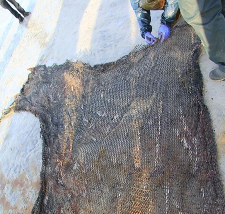 Una red de pesca, extraída del estómago de la ballena encontrada.