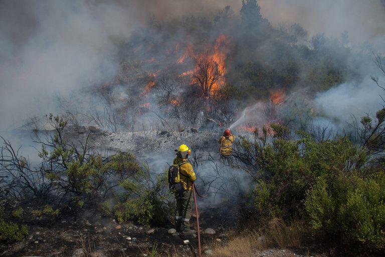 En la Argentina, un 95% de los incendios forestales son de origen intencional