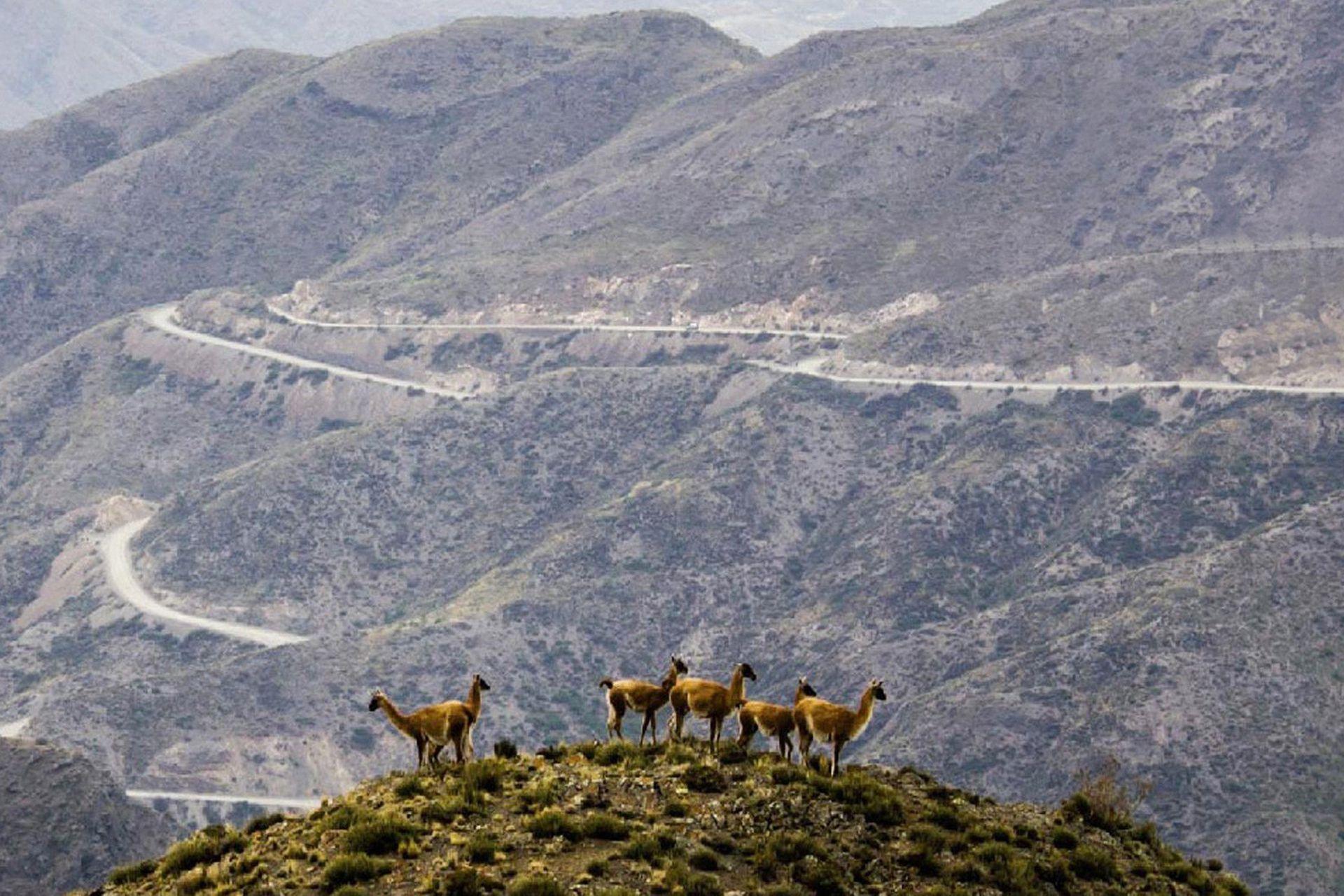 Los Caracoles de Villavicencio: 55 km de curvas desde Uspallata hasta el antiguo hotel termal