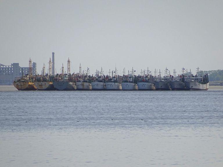 Pesqueros de arrastre en el puerto de Montevideo