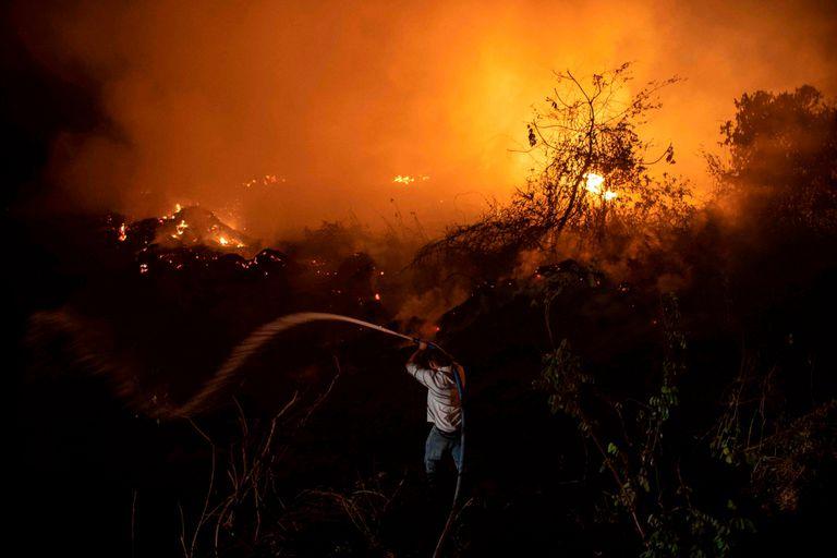 El Pantanal de Brasil sufre un récord histórico de incendios