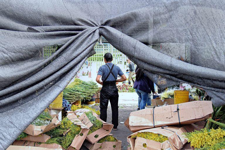 La advertencia que no me dieron para visitar el Mercado de Paloquemao en Bogotá