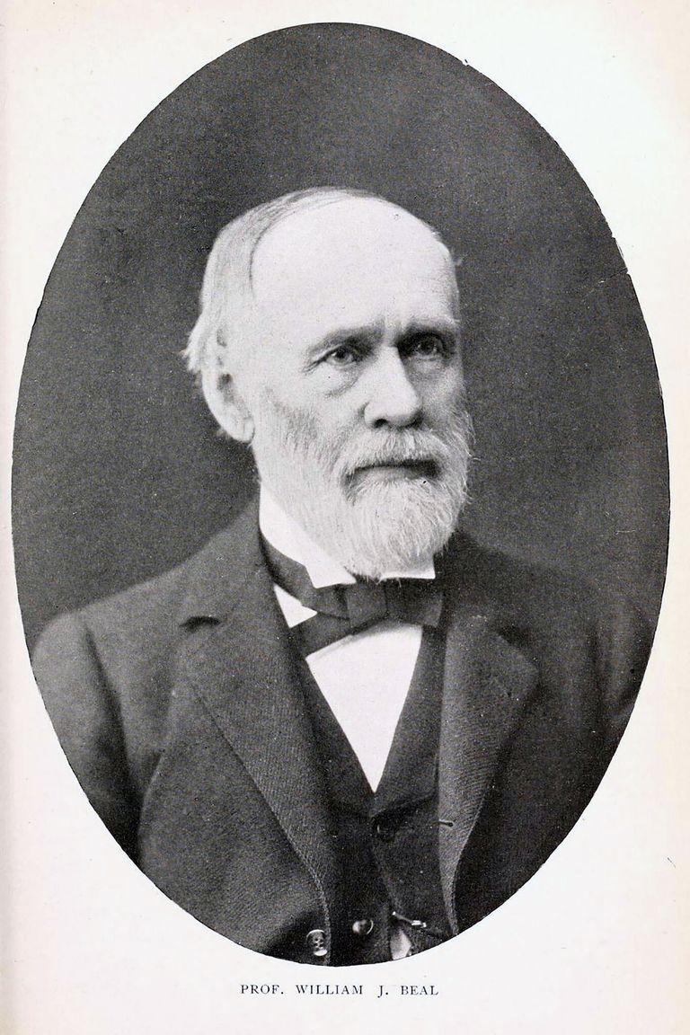 William James Beal, the botanist who buried the seeds in 1879
