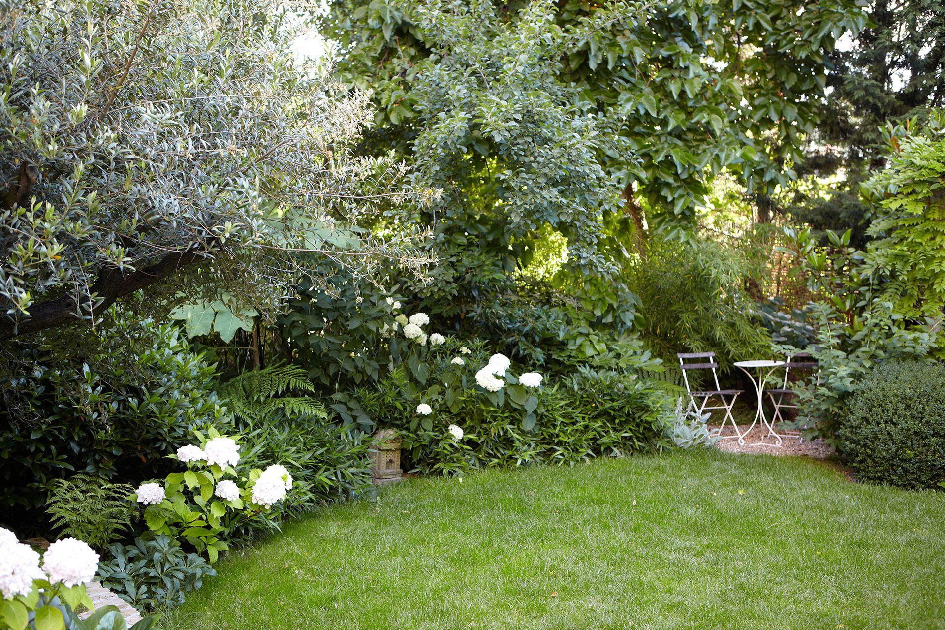 Entre las plantas una mesa al resguardo del verde.