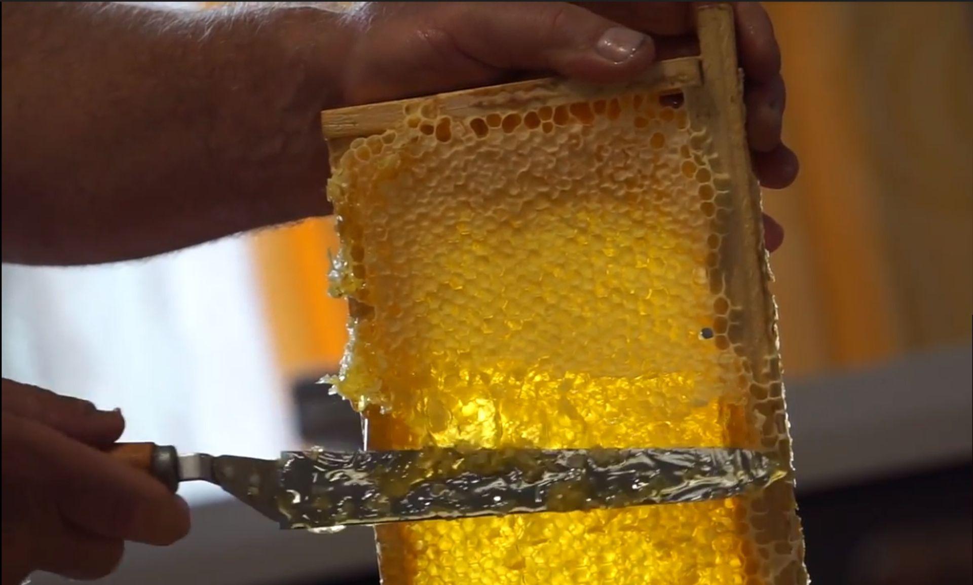 La miel integra la oferta de turismo de Colón, se pueden visitar los establecimientos y comprar los productos en ferias