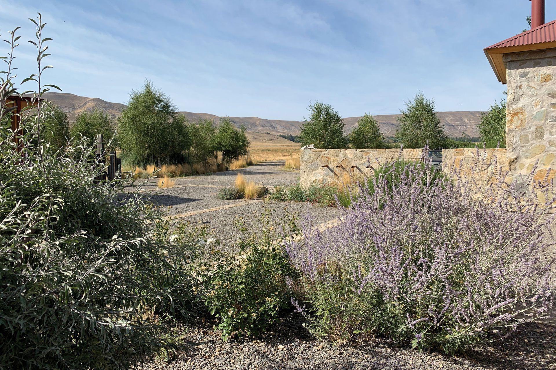 Un muro bajo se aprovechó para plantear una fuente que trae el sonido del agua hacia esta parte del jardín.