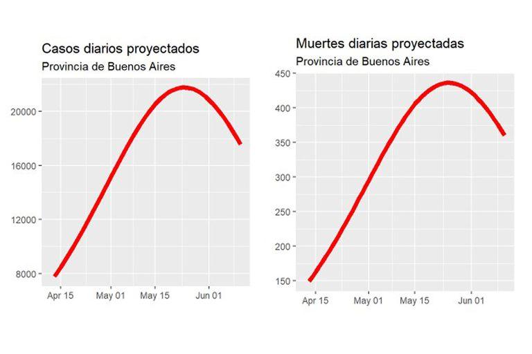 Gráfico de la proyección de los contagios y muertos por Covid-19 en la provincia de Buenos Aires en los próximos dos meses.