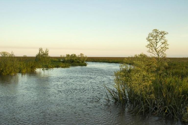 Una nueva isla se formó en el Río de la Plata, frente a las costas de San Isidro (Municipio de San Isidro)