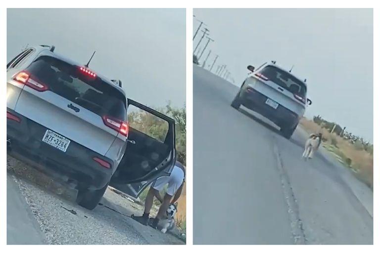 Abandonó un perro en la ruta, lo grabaron y el video se volvió viral: fue detenido