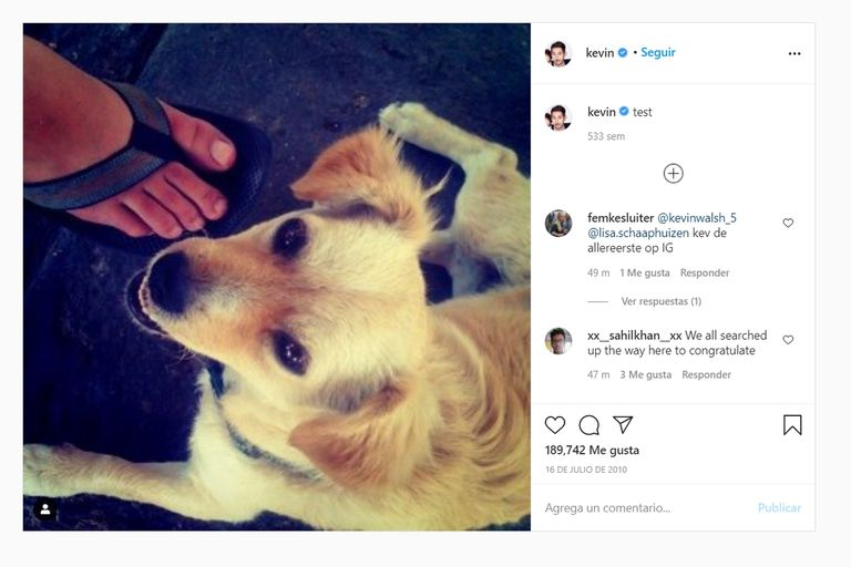 El primer posteo de Instagram, hace 10 años, dejó para la posteridad una foto de la perra de Kevin Systrom, el cocreador de la app