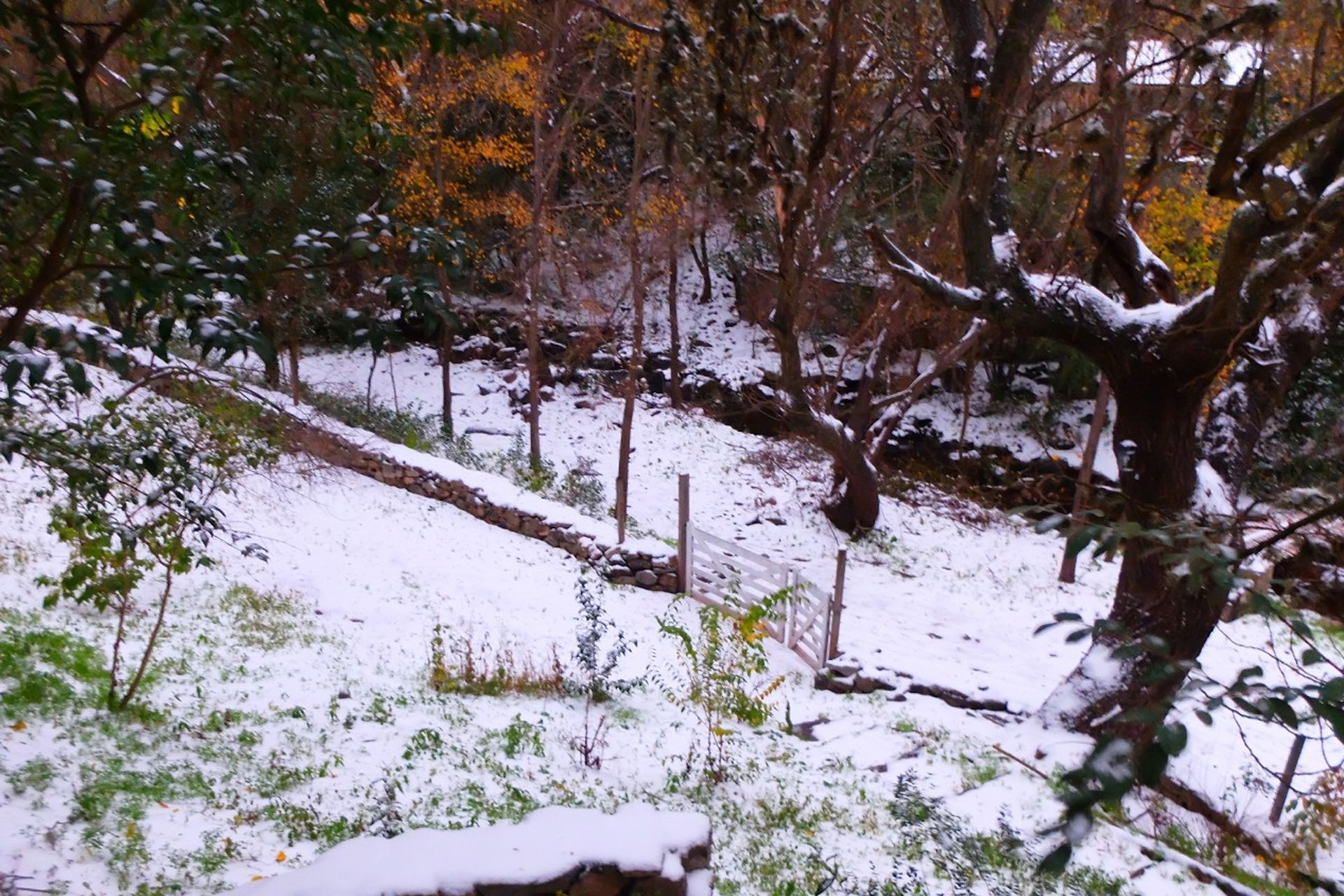 También nevó en otras provincias como Mendoza, La Rioja, San Juan y San Luis.