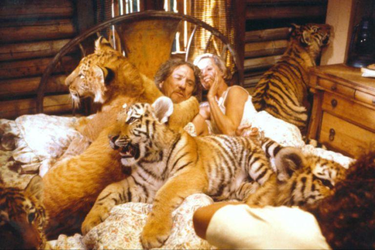 Tippi Hedren y su exmarido Noel Marshall concibieron la idea de Roar pero nunca imaginaron los peligros que traería consigo