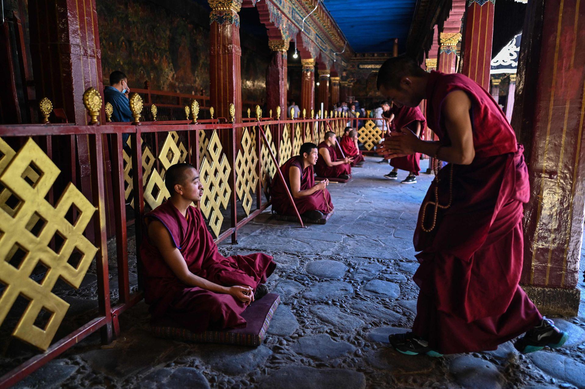 El Colegio Budista Tibetano, uno de los lugares más altos de aprendizaje en la Tierra, tiene más de 900 estudiantes que estudian mandarín, inglés y estudios políticos