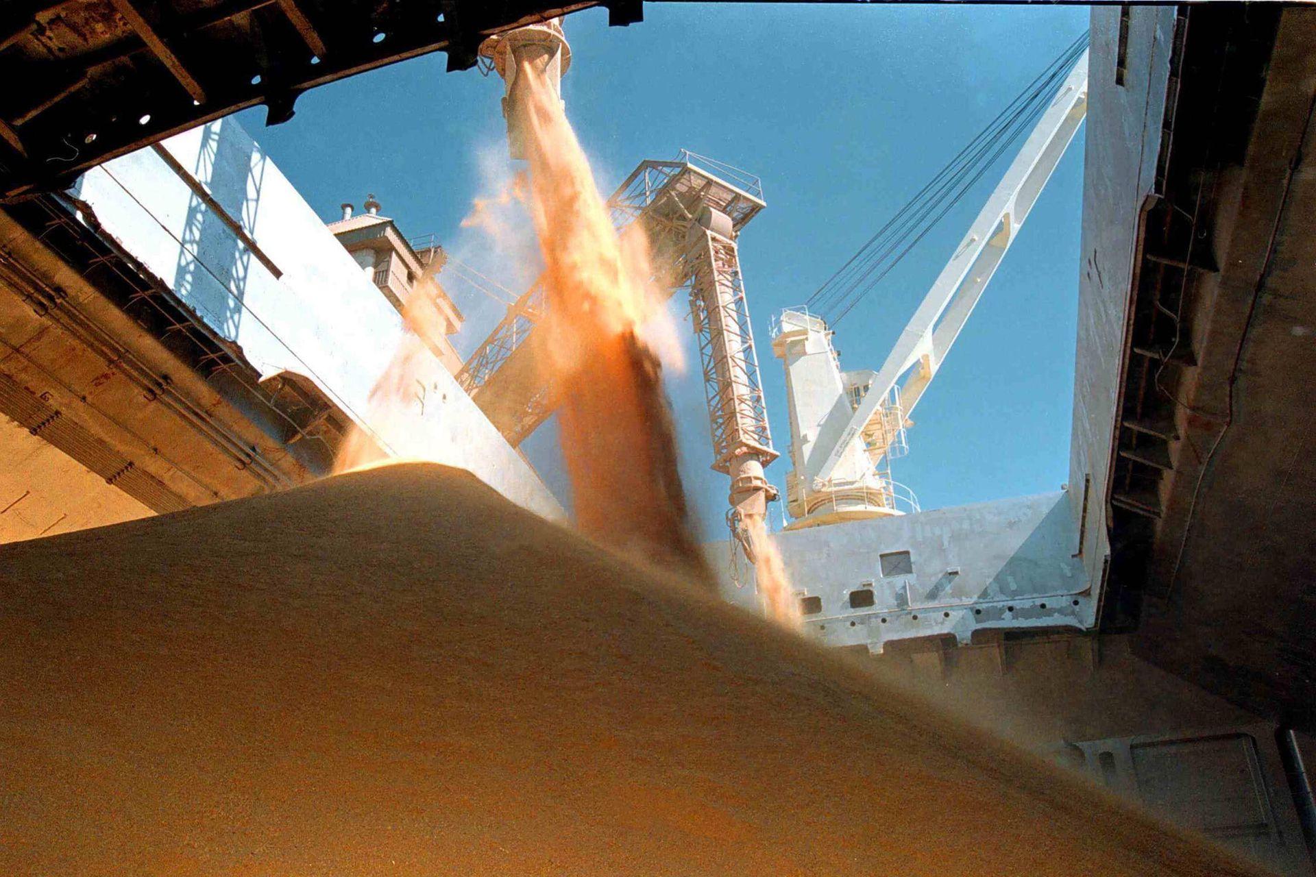El año pasado se vendieron al exterior granos y subproductos por 100 millones de toneladas, un volumen récord