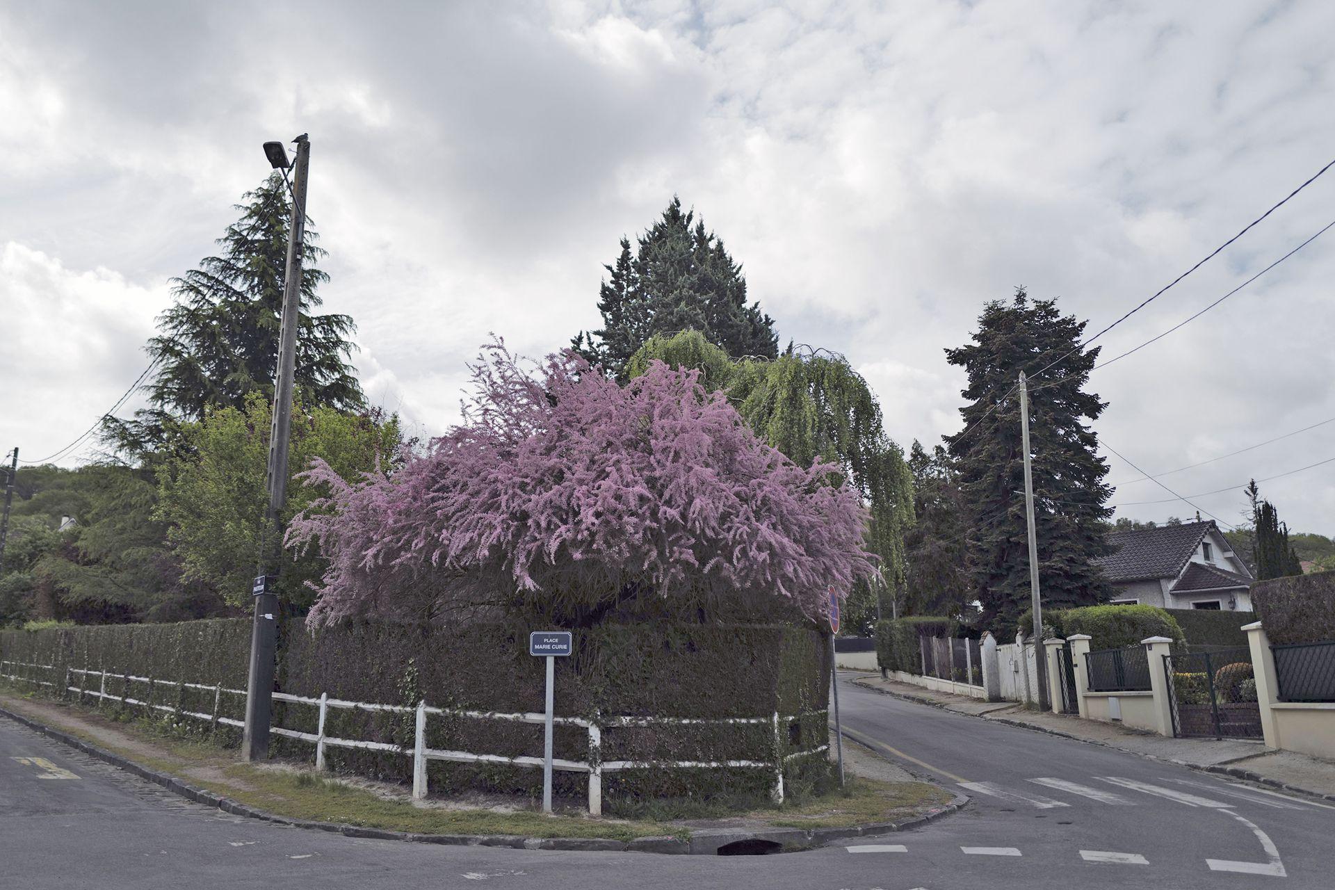 La casa está situada en el suburbio de Saint Remy les Chevreuse, en París.
