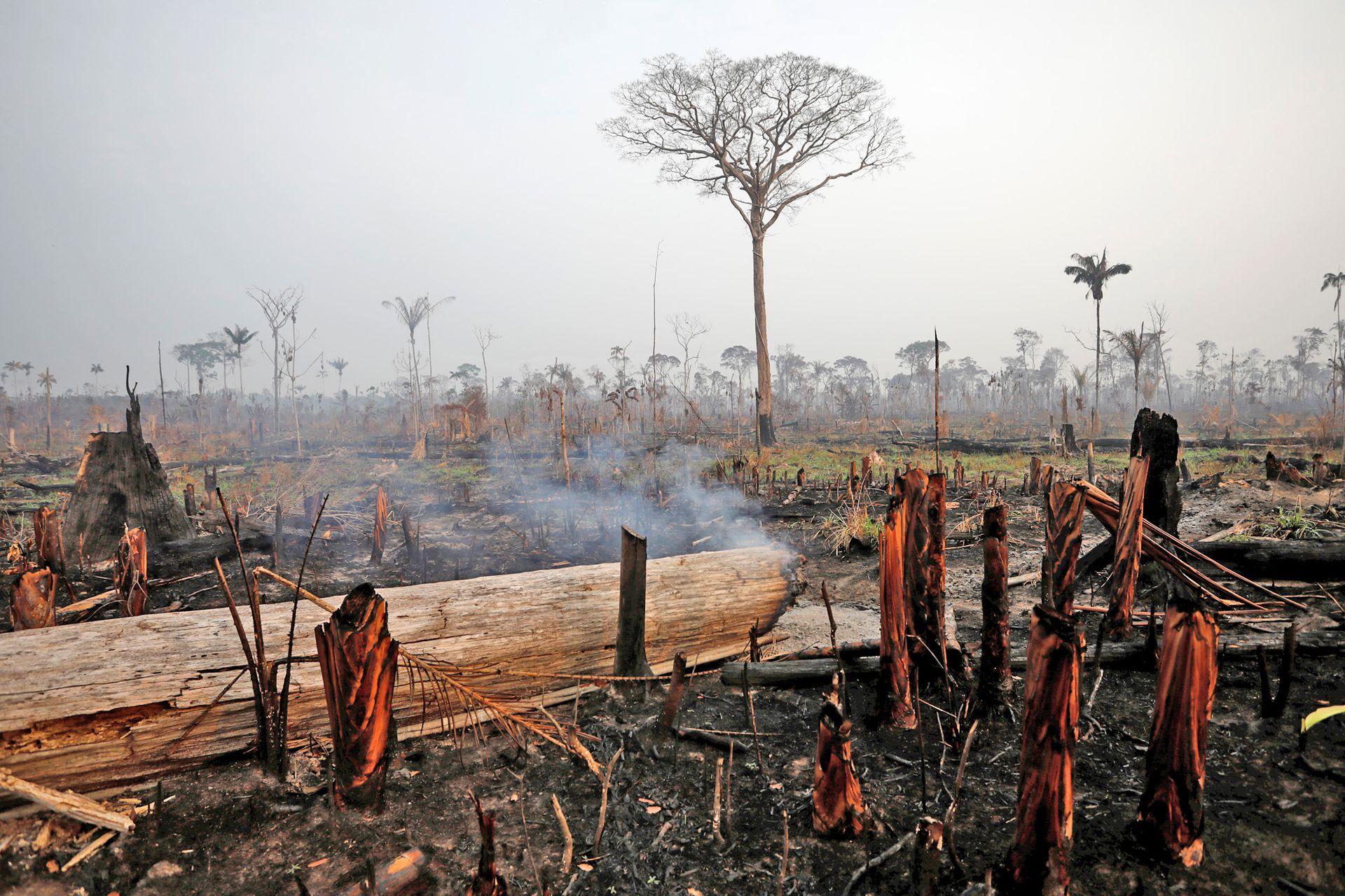 Boca Do Acre, un zona devastada por el fuego