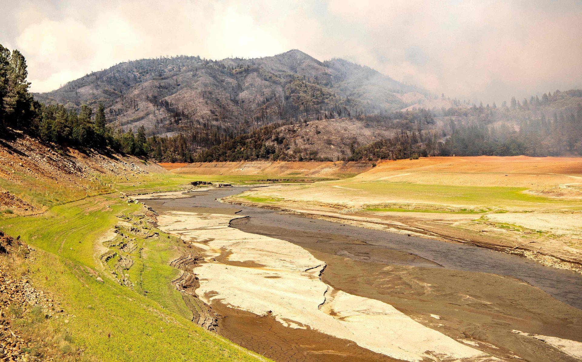 Colinas quemadas, llamas y humo rodean un lago Shasta afectado por la sequía durante el incendio de Salt en Lakehead