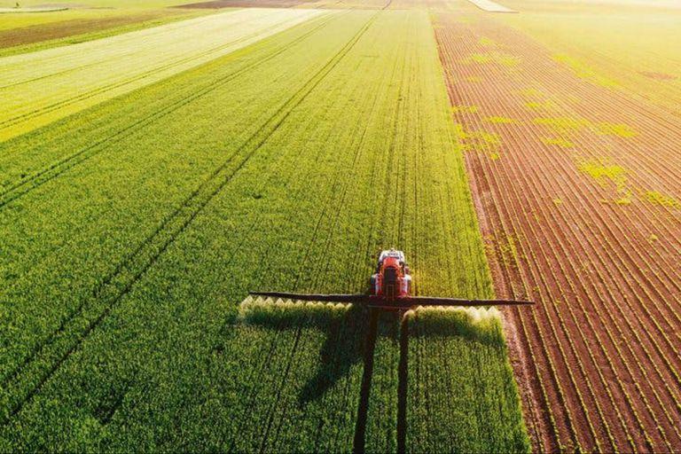 Tecnología. El dilema del tranvía y la robotización del agro