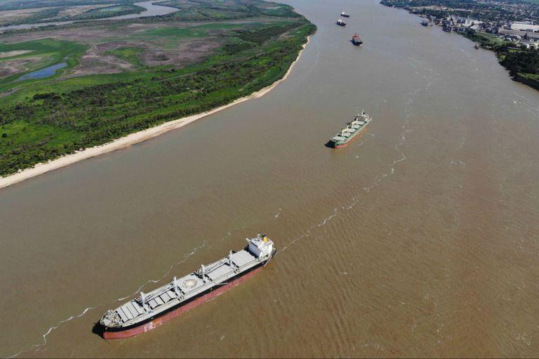 Exportadores: el Senasa sumó un requisito para el inicio de cualquier trámite
