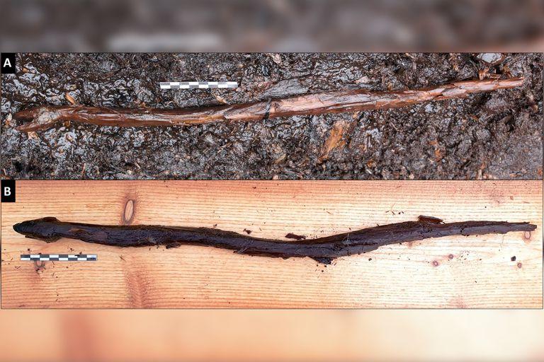 Los rasgos de la serpiente, de 53 centímetros de largo, fueron tallados en un palo. El artista incorporó las sinuosas curvas de la rama para conseguir el serpenteo del animal