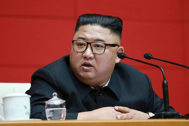 """Para el líder de Corea del Norte, Kim Jong-un, tener un perro como mascota es un símbolo de """"decadencia capitalista""""; según el diario surcoreano Chosun Ilbo, los dueños de los perros temen que sean utilizados para resolver las escasez de alimentos"""
