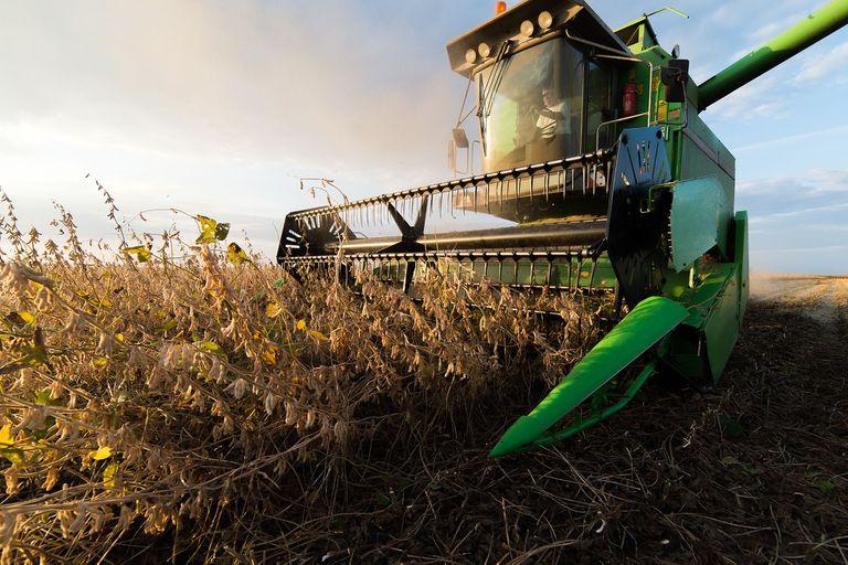 Los fertilizantes, un insumo clave para la producción en general