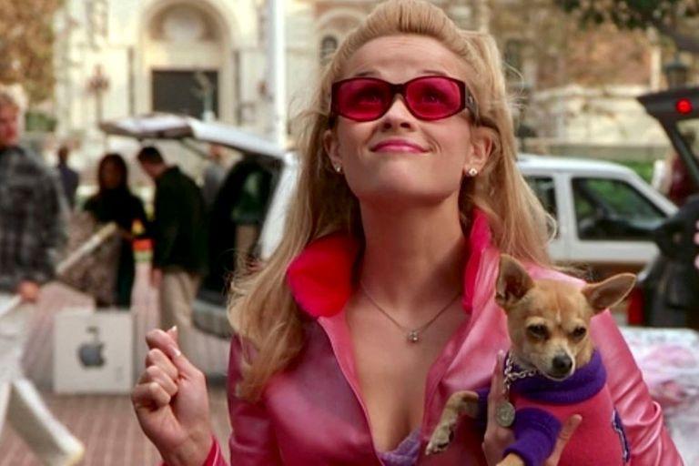 La franquicia Legalmente rubia, con Reese Witherspoon, fue uno de los grandes éxitos recientes del estudio, que planea volver con una tercera entrega