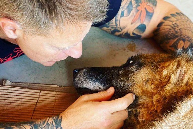 El doloroso momento de Alejandro Fantino por la muerte de su perro Willi