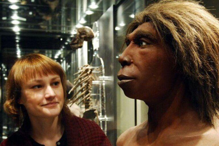El Homo sapiens convivió unos miles de años con el Homo neanderthalensis y con los Denisovanos