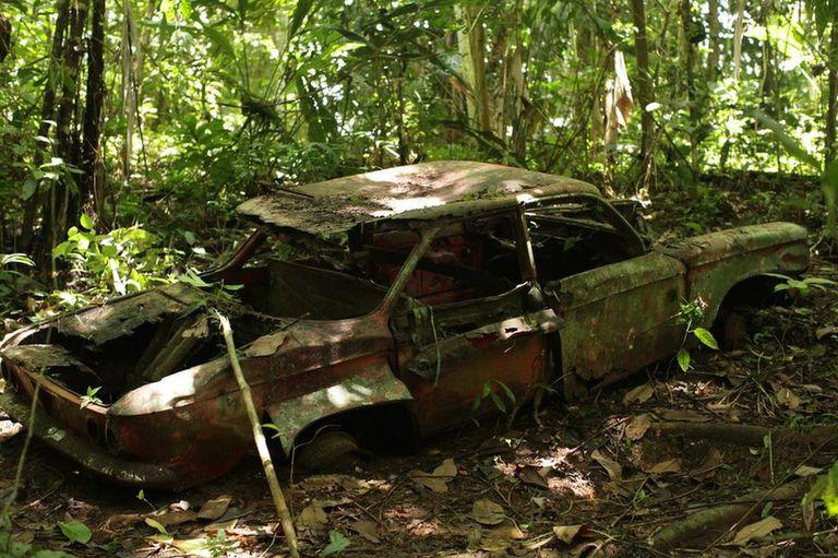 Es una jungla compacta e infranqueable de 575.000 hectáreas que comparten Panamá y Colombia