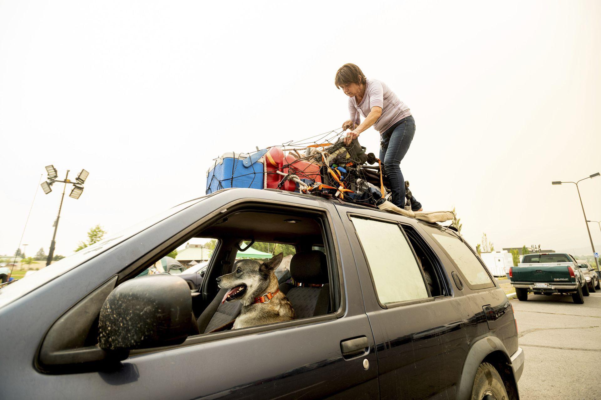 """Kesia Studebaker, residente de Greenville, que perdió su casa a causa del incendio de Dixie, asegura sus pertenencias antes de salir de un refugio para evacuados de Susanville, en California. La acompaña su perro Logan. """"Lo perdí todo. Esto es todo lo que me ha quedado"""", dijo Studebaker y agregó """"Es un nuevo comienzo, una nueva aventura"""""""