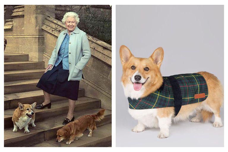 La tienda oficial de Buckingham vende accesorios para mascotas inspirados en la reina