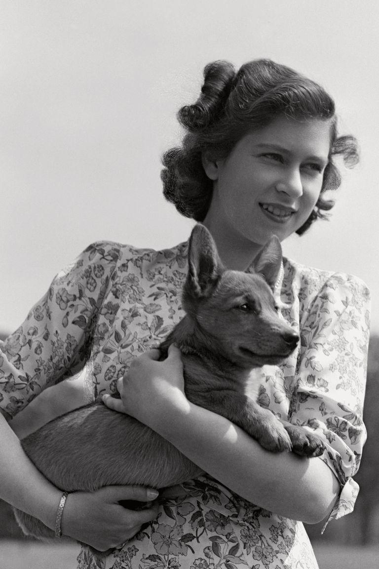 """Isabel II siempre fue """"fanática"""" de esta raza de perro"""