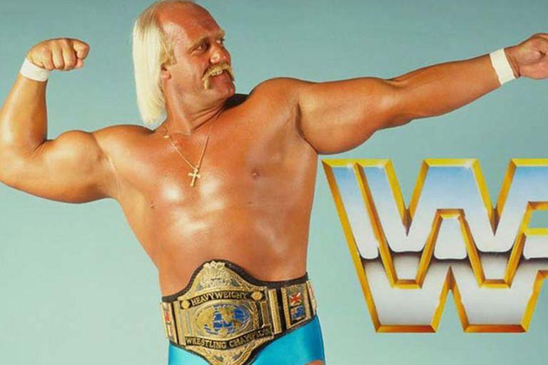 Entre sus logros se destacan 12 reinados como campeón mundial al haber sido seis veces campeón de la WWF