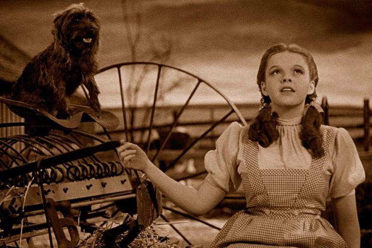 Judy Garland canta Over The Rainbow en la inoxidable El mago de Oz, actualmente en escena en Buenos Aires con Sofía Morandi en la piel de la niña Dorothy
