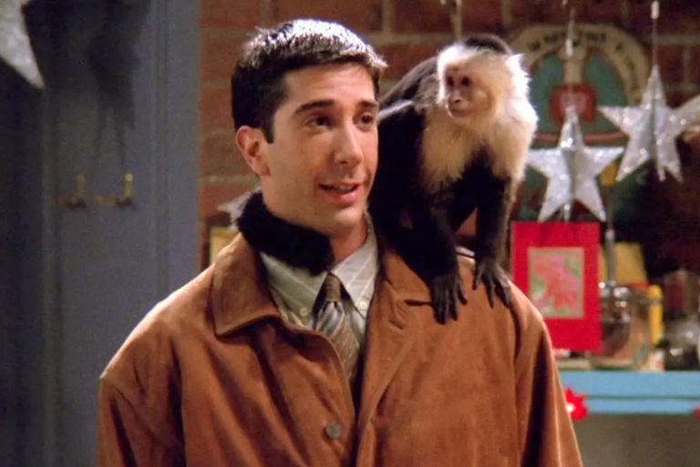El actor junto a la mona en un episodio de la primera temporada de Friends