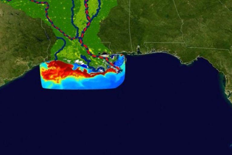"""El crecimiento de la """"zona muerta"""" del Golfo de México en los últimos cinco años no ha podido contenerse."""