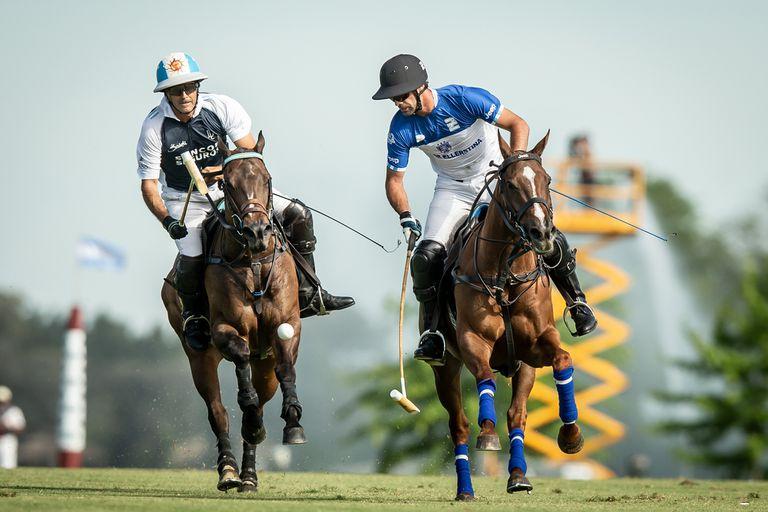 La Argentina está a la vanguardia mundial en cría, reproducción y comercialización de caballos de polo. Recibe cerca de US$30 millones por año por la exportación de caballos de élite