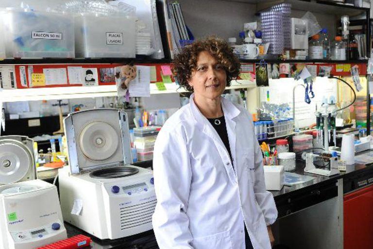 La viróloga molecular Andrea Gamarnik