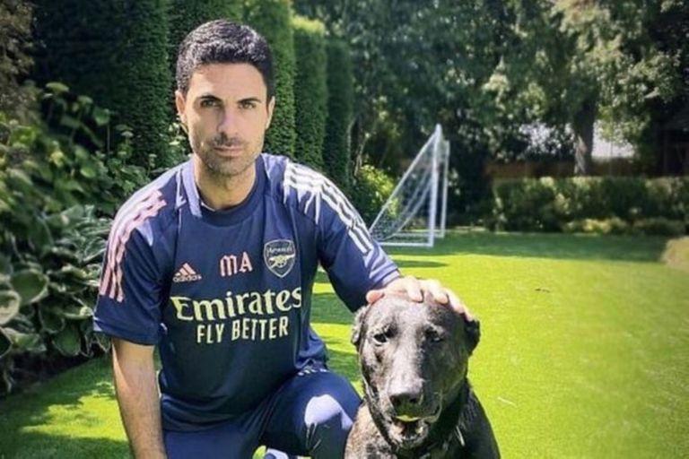 Mikel Ateta decidió proteger su vivienda y para ello compró un perro por 22.000 euros
