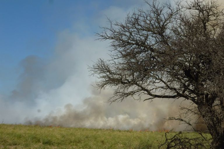 Se aproxima la temporada de incendios que se extiende desde noviembre hasta marzo de 2020.
