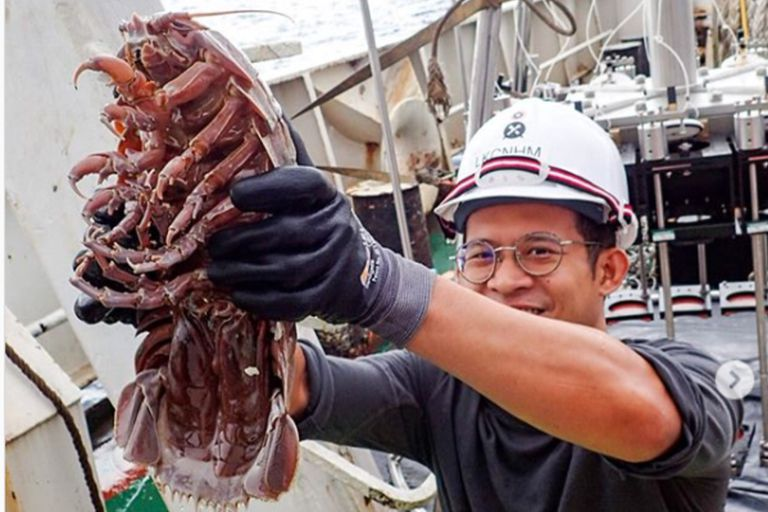 """Hallazgo: encuentran una """"cucaracha gigante"""" en las profundidades del océano"""