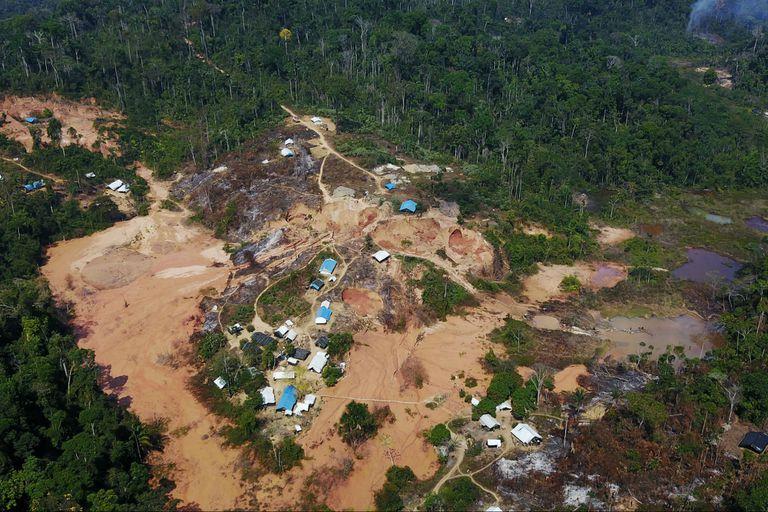 Según datos satelitales analizados por el Instituto del Hombre y Medio Ambiente (Imazon), entidad no gubernamental que funciona en el estado de Pará, la deforestación en la Amazonia brasileña creció el 80% en septiembre en comparación con el mismo mes del año anterior.