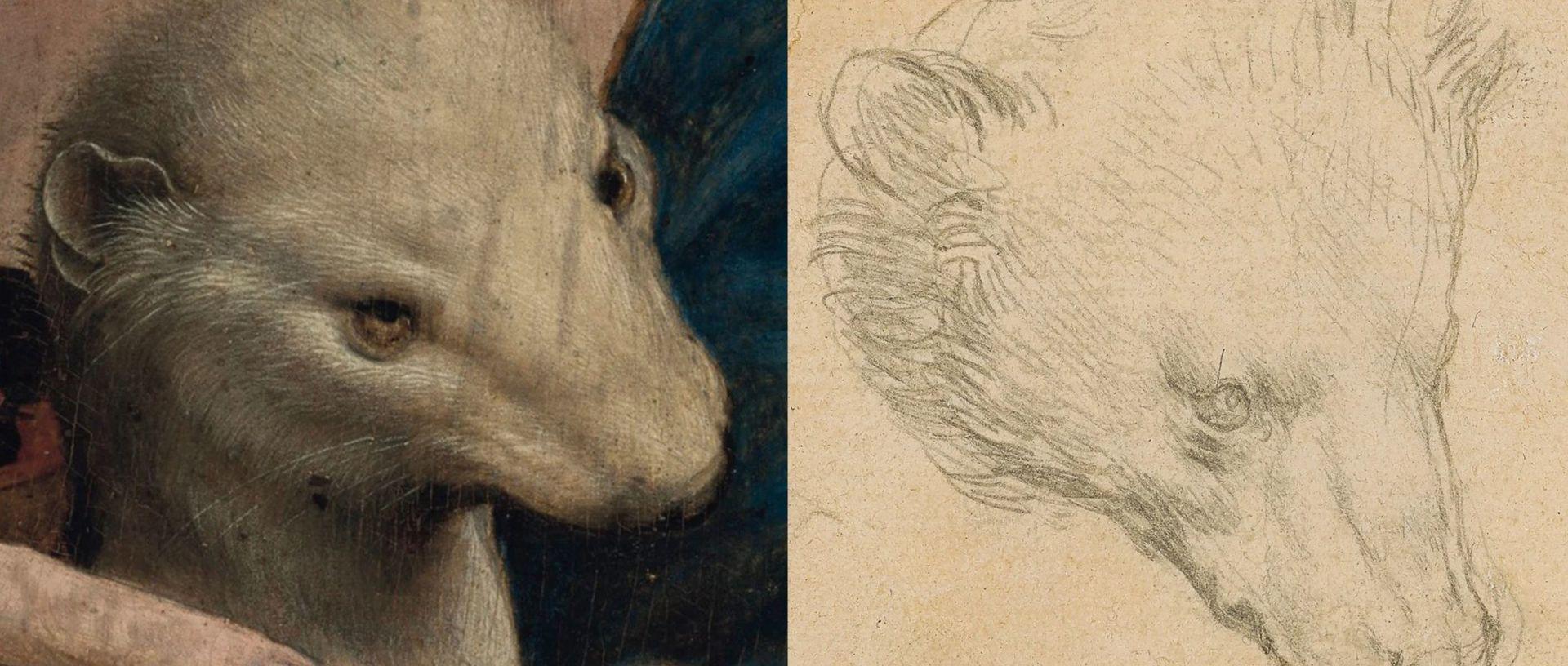 Detalle de las cabezas de los animales creados por Da Vinci