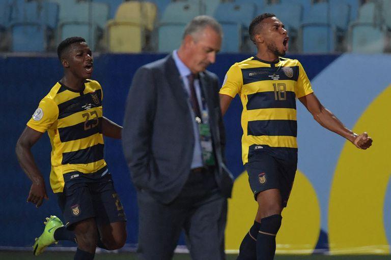 Ayrton Preciado y Moises Caicedo celebraban detrás uno de los goles ecuatorianos; Gustavo Alfaro, en primer plano, se lamentaría después un empate que complica mucho a su equipo